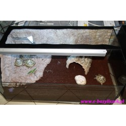 Terrarium żółw lądowy full z ogrzewaniem, UV i halogenem